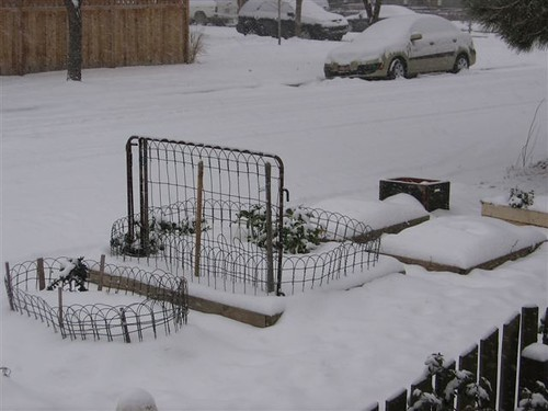 SNOW IN BOISE