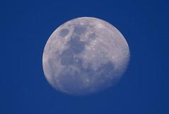 Early Moon - Blue Sky (cjlai76) Tags: auto blue sky moon nature lens asian prime mirror reflex focus minolta sony malaysia af f80 alpha 500mm maxxum a300