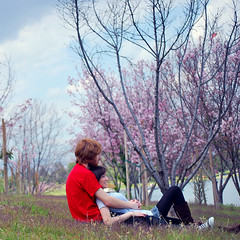 Understanding Love Through A Singing Forest (Amanda) Tags: california trees lake love nature colors grass self spring couple pretty purple relaxing redhead cherryblossoms anyway ithinkiwasabouttoblink itlookslikeihavealazyeyehaha