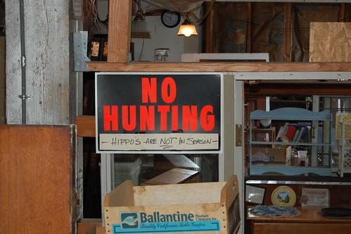 No Hunting (Hippos)