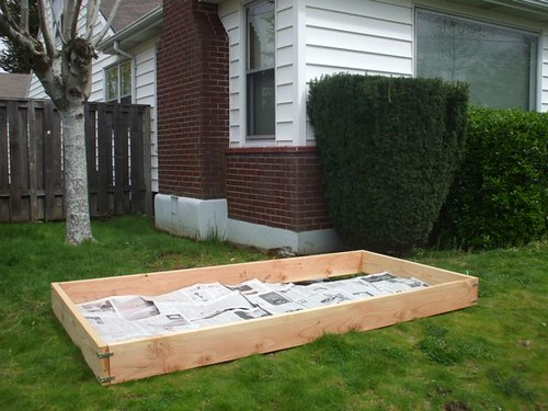 raised bed with newspapers