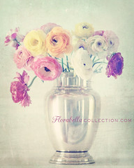 Ranunculas in Silver Vase (Shana Rae {Florabella Collection}) Tags: stilllife green texture vintage silver 85mm naturallight faux vase thursday ranunculas florabella paulgrand d700 omgyoucanseemeinthereflectionlol shanarae