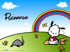 Sanrio Pochacco Wallpaper (Fannie_Pochacco) Tags: pochacco