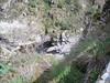 Pozo Humos Berta (8) (Senderismo Sermar) Tags: salamanca arribes aldeadavila pereña pozohumos
