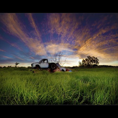 Green, Green Grass