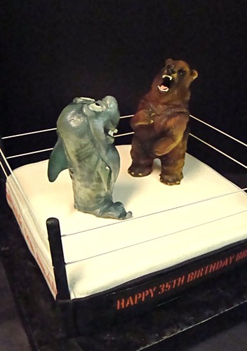 shark vs bear cake