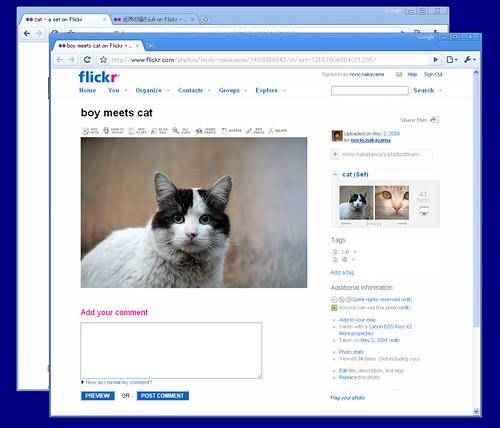 Google Chrome window1