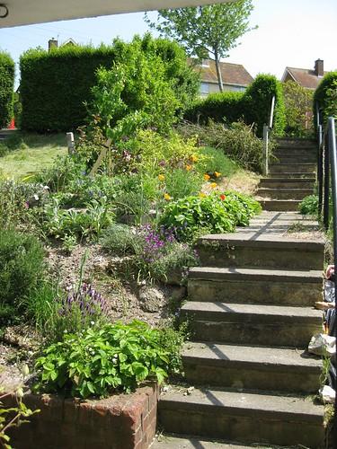 steps May 2009