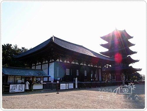 興福寺 (7)