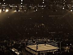 WWE Judgement Day (eytonz) Tags: chicago sports wrestling fake entertainment allstatearena wwe wwf ppv payperview worldwrestlingentertainment