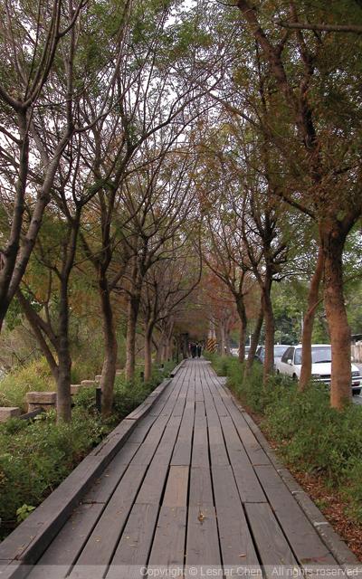 鳥松鄉濕地公園-0002