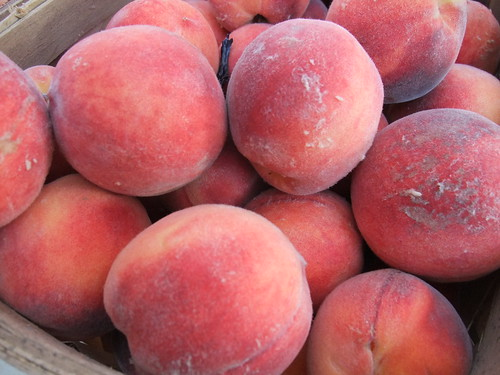 Freestone Peaches from Rhoads Farm Market