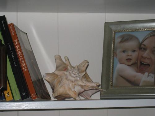 shelf 011