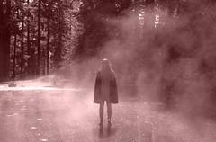 (anja louise verdugo) Tags: film analog forest portland andrea steam cape