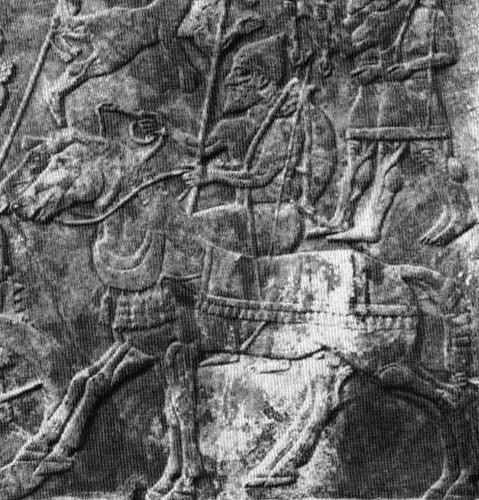 assyrian horsearcher