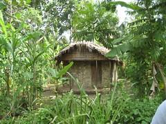 IMG_0270.JPG (nashgirl) Tags: haiti haf handsandfeet handsandfeetproject hafproject