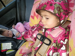 holding hands in the car (hermalina) Tags: baby sisters toddler carseat britax