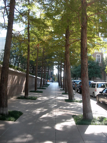 A sidewalk in Downtown Dallas' Arts District.