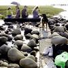 moof moof, i'm the boss ! (YENTHEN) Tags: people dog umbrella god candid taiwan taichung ricoh wetland gaomei grd yenthen 0015995