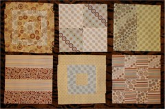 one block from each set (mojave wrangler) Tags: cat quilt handmade block scratch quiltblocks quiltalong ohfransson