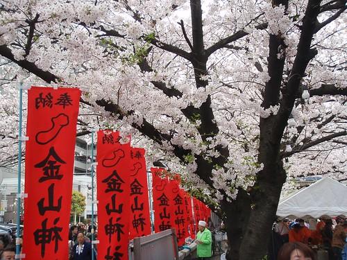 Sakura no chinchin