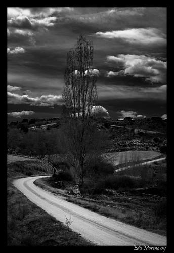 Fotografía en Blanco y Negro 3430098298_5b7c46b7e3