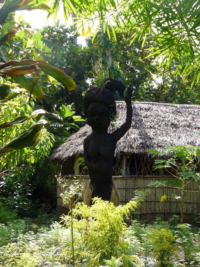 Vanuatu : Ile de Tanna #87