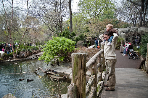 Central_Park_Zoo-25