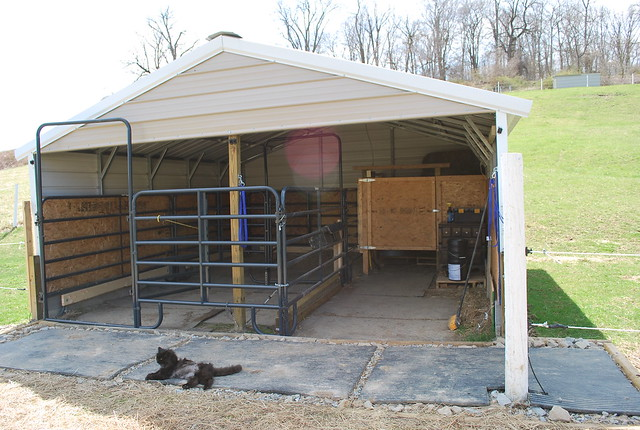 Metal Horse Shelters : Pros and cons of metal barn horsetopia forum