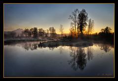 The Pond (Maclobster) Tags: dykes golden maple ears ridge pitt polder keithgrajala