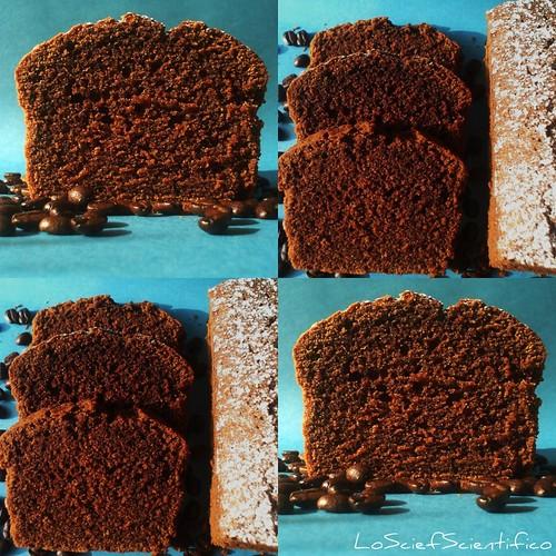 Gluten&Lactose Free Chocoffe Plum Cake