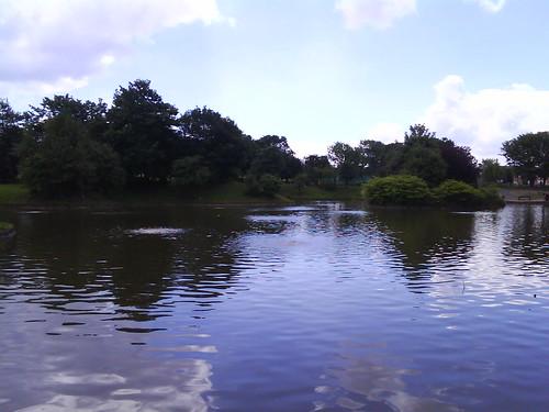 JPEG Image (6913)