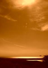 Sunlight on the Irish Sea (billnbenj) Tags: sunlight sepia island golden cumbria barrow irishsea goldenlight walney walneyisland walneychannel