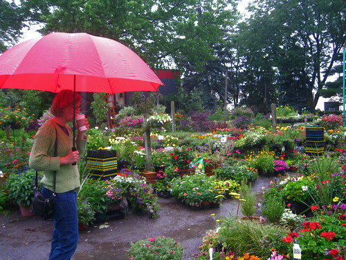 me at the garden center in the rain