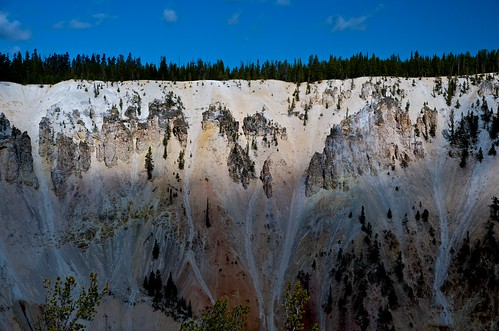 Yellowstone, the edge of treelined cliff