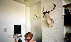 tell me everything. (jackie young.) Tags: newyork brooklyn taxidermy horseshoe wesleybelknaprose
