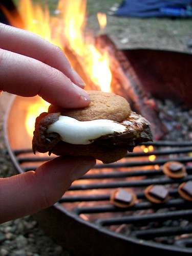 Melted S'more Goodness
