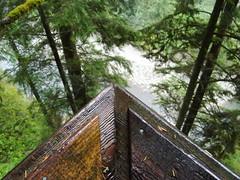 CliffHanger Boardwalk