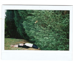 (mary_robinson) Tags: film girl bush isabel reach instax