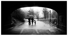 Central Park (Patrick J. Negwer) Tags: park bw white black blanco rain day centralpark negro central dia rainy farol