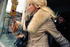 (Monsieur Marchi) Tags: street woman fur sweden stockholm blonde chic f4 kodakportra160vc voigtlnder 25mm sveavgen colorskopar minoltacle doginhandbag
