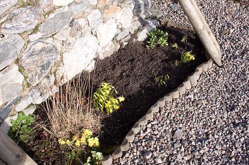 Garden (3)