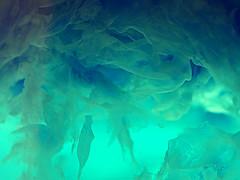 27Feb Just Blue (JanetJJ) Tags: macro net clouds veil olympus science chemistry gossamer ammonia etherial precipitate e510 copped 35mmmacro35 feb2009