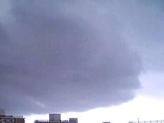 【写真】シロイルカ雲