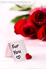 For You ♥ (QiYaDiYa) Tags: red flower macro canon 100mm fatma almeer 400d qiyadiya