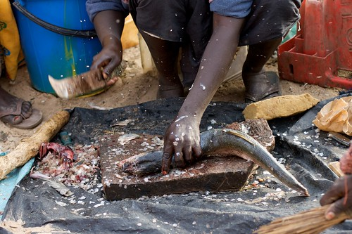 Mbour fish market, Senegal