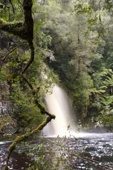 Sir John Waterfall (Joe Cocozza) Tags: waterfall tasmania sirjohnwaterfall