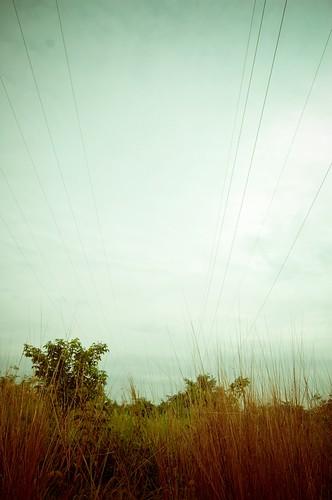 Kabel Lesap