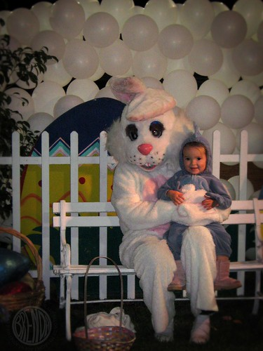 silly easter bunny photo