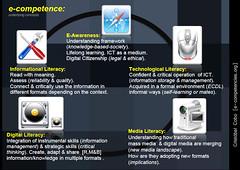 e-competence [Cristobal Cobo]
